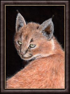 Original Watercolour Lynx Painting - Caracal Kitten - Illustration, Fine-Art Detail