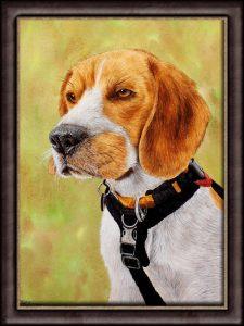 Original Watercolour Beagle Portrait Painting - Detailed Fine Artwork