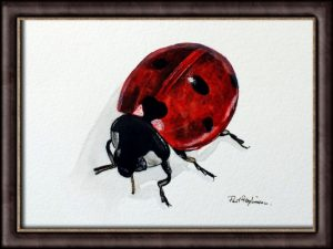 Original Ladybug Watercolor Painting - Fine Art Insect Illustration