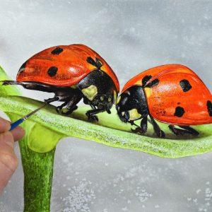 Paul Hopkinson painting ladybirds in watercolour