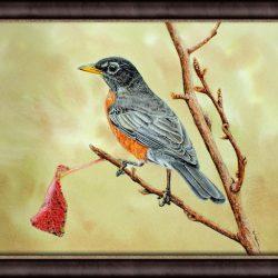 Original Watercolor Robin Painting