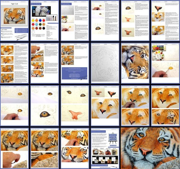 Overview image of a tiger PDF watercolour tutorial