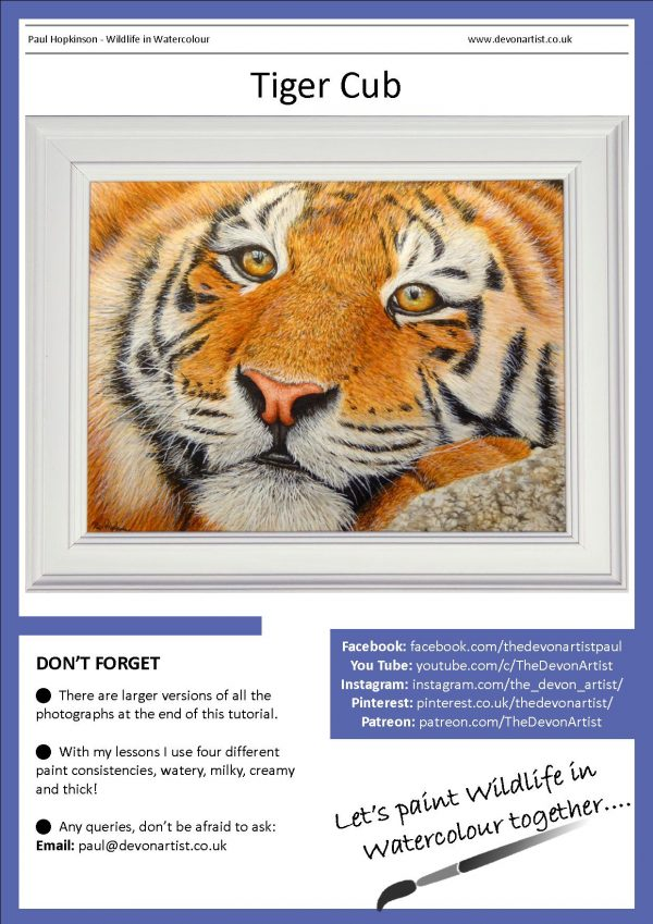PDF watercolour tutorial, how to paint cats