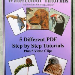 Tutorials on how to Paint Wildlife in Watercolour, PDF Lessons