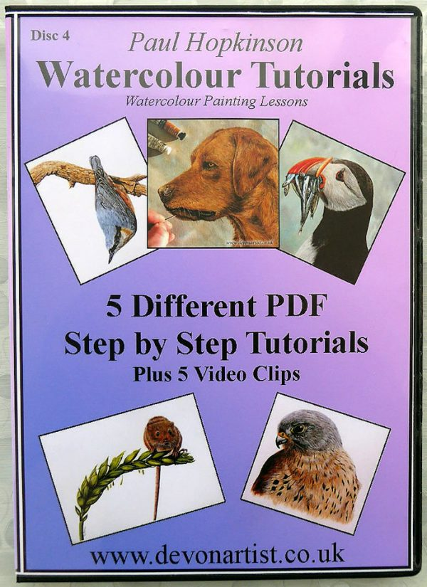 Watercolour painting tutorial CD cover
