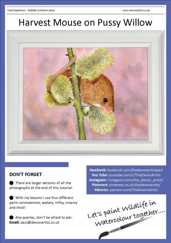 PDF watercolour tutorial on how to paint a harvest mouse