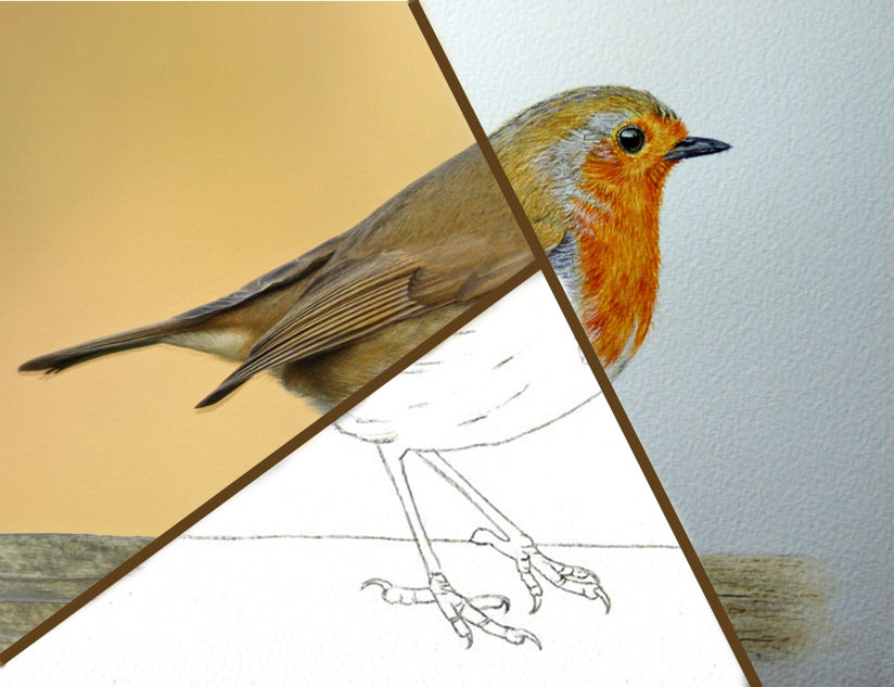 Freehand drawing is a good skill to have for all artists