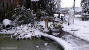 Snow in North Devon, February 2019