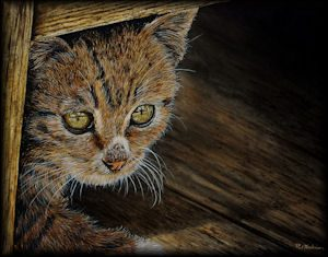 Learn How to Paint a Cat in Watercolour - Detailed PDF