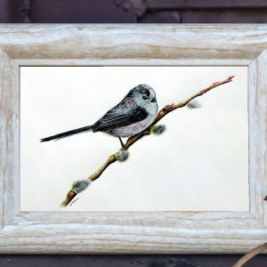 Watercolour painting of a cute little bird by Paul Hopkinson