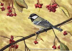 Watercolour illustration of a Great Tit bird
