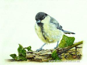 Original watercolor bird painting