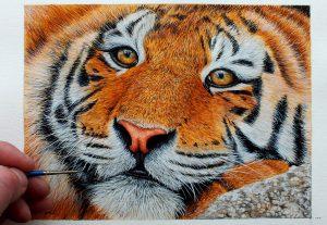 Original watercolor tiger painting