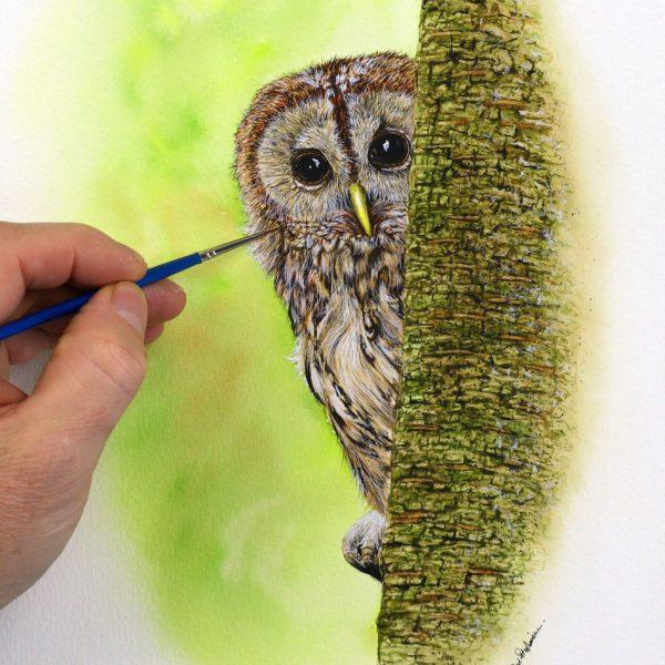 Paul Hopkinson painting a realistic tawny owl illustration