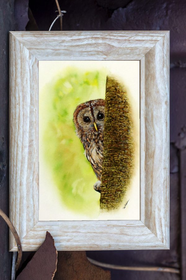 Watercolour owl painting by artist Paul Hopkinson, shown in a rustic frame