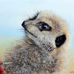How to Paint Realistic Animal Fur - Meerkat PDF