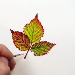 Bramble Leaf Watercolour Painting