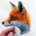 Fox in watercolor tutorial