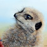 Meerkat Watercolor Tutorial