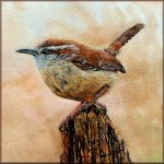 Watercolor painting of a Carolina Wren
