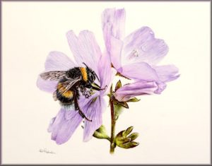 Original Watercolour Painting of a Bumblebee with Fine Art Detail