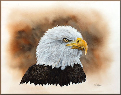 Button to all the videos linked to the Bald Eagle watercolour tutorial
