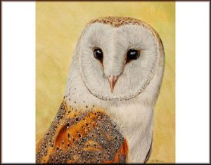 Step by Step Owl Painting Tutorial, Watercolour Lesson