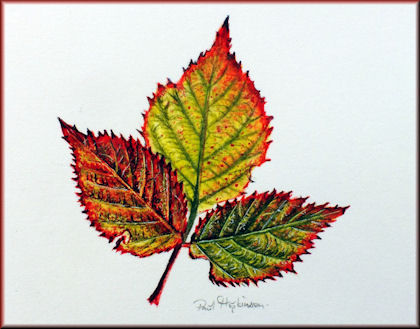 Button to all the videos linked to the Bramble Leaf watercolour tutorial