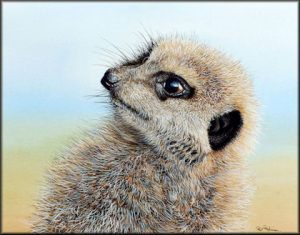 How to Paint Realistic Animal Fur - Meerkat PDF