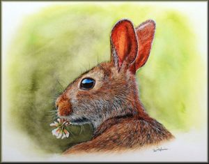 Realistic Watercolour Painting of a Rabbit, Original Art