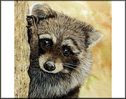 Button to all the videos linked to the Raccoon watercolour tutorial