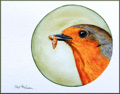 Button to all the videos linked to the Robin head watercolour tutorial