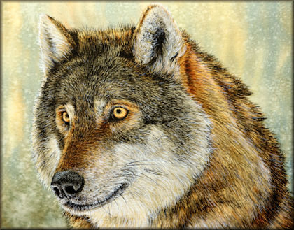 Button to all the videos linked to the Wolf watercolour tutorial