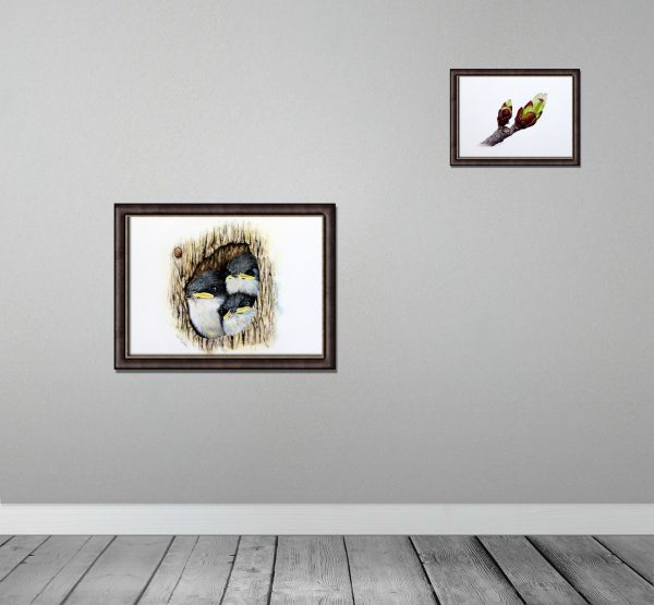 Watercolour tree swallows by Paul Hopkinson framed and on a wall