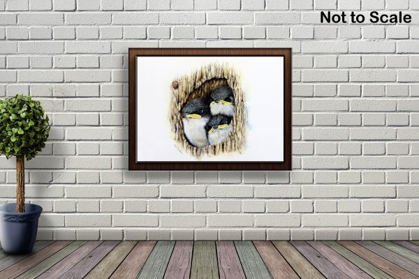Watercolour tree swallows by Paul Hopkinson hanging on a brick wall