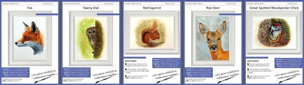 Learn how to Paint Woodland Wildlife in Watercolour - Step by Step Downloadable PDF Tutorials