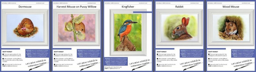PDF Wildlife in Watercolour Tutorials - Learn to Paint Birds & Animals
