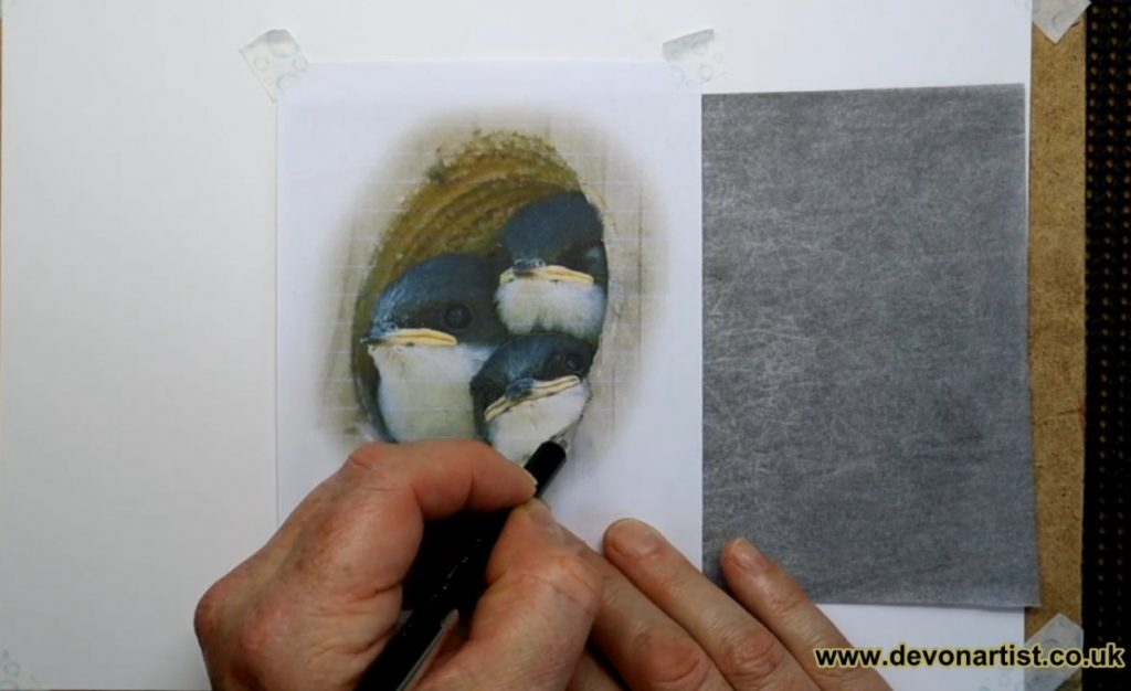 How to use graphite paper to transfer and image by Paul Hopkinson
