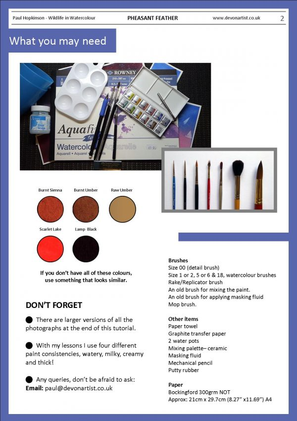 Materials needed to paint a pheasant feather in watercolour