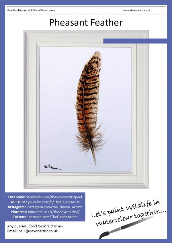 Painting a pheasant feather in watercolour a beginner lesson