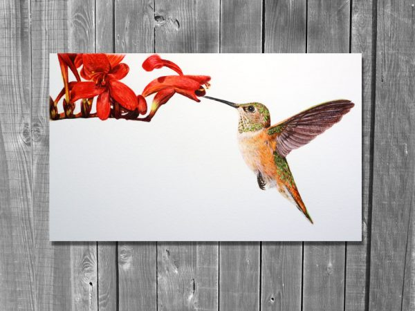 Watercolor painting of a Hummingbird by Paul Hopkinson on wood panelling