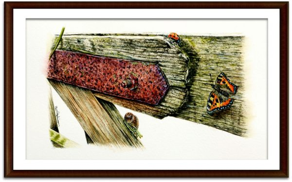 Original watercolour painting of insects on an old rustic gate