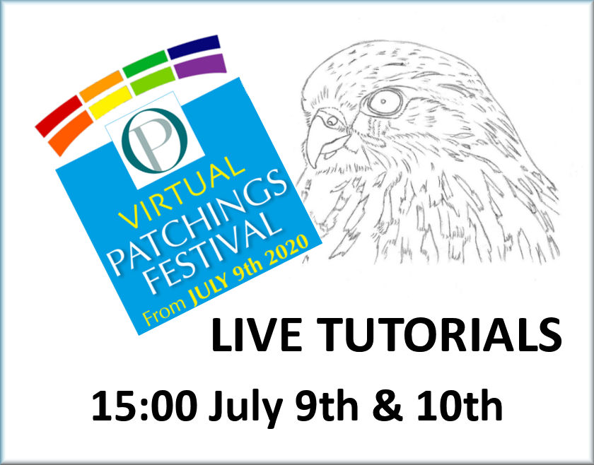 Free watercolour bird tutorial, realistic fine art by Paul Hopkinson part of Patchings 2020