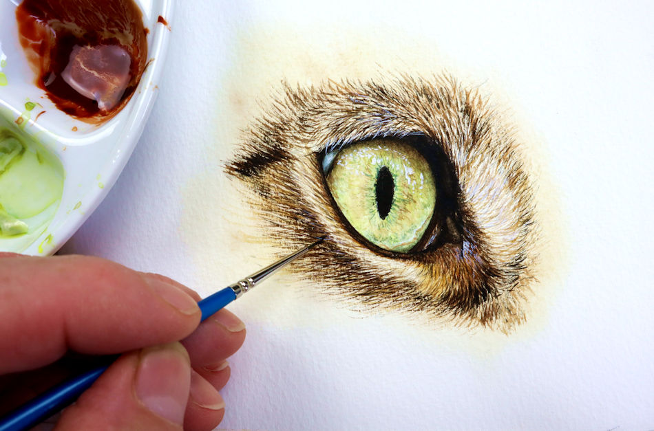 Paul Hopkinson painting a cat's eye in watercolor