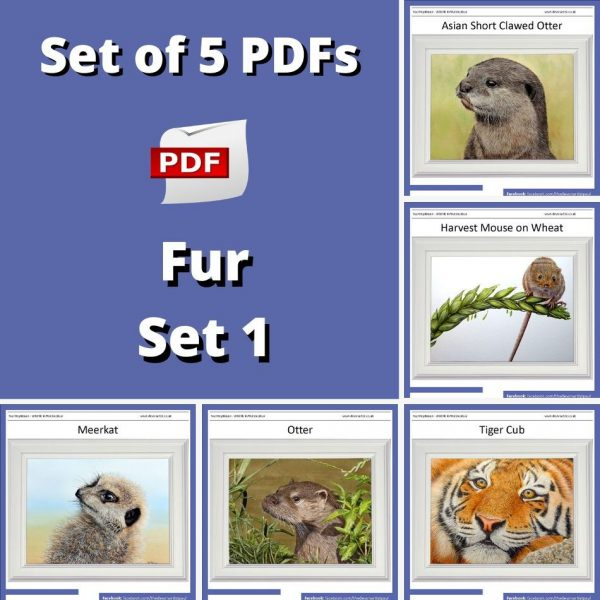 Set of 5 PDF watercolour tutorials on painting realistic animal fur