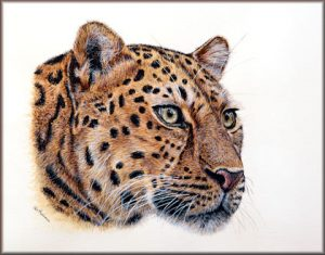 Realistic Watercolor Painting Tutorial - Downloadable Leopard PDF