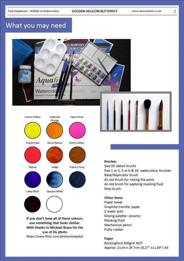 Materials needed to paint a watercolor butterfly