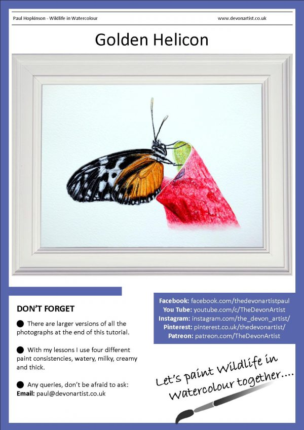 Realistic watercolor butterfly painting tutorial