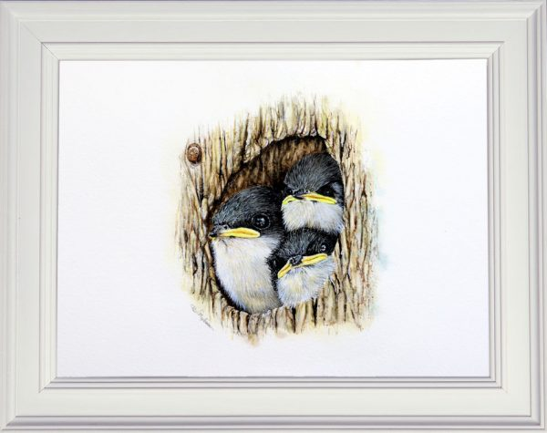 Tree swallows painted in watercolour in a white frame