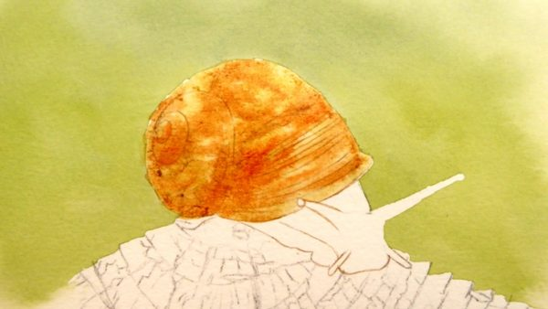 Watercolor snail painting stage 2